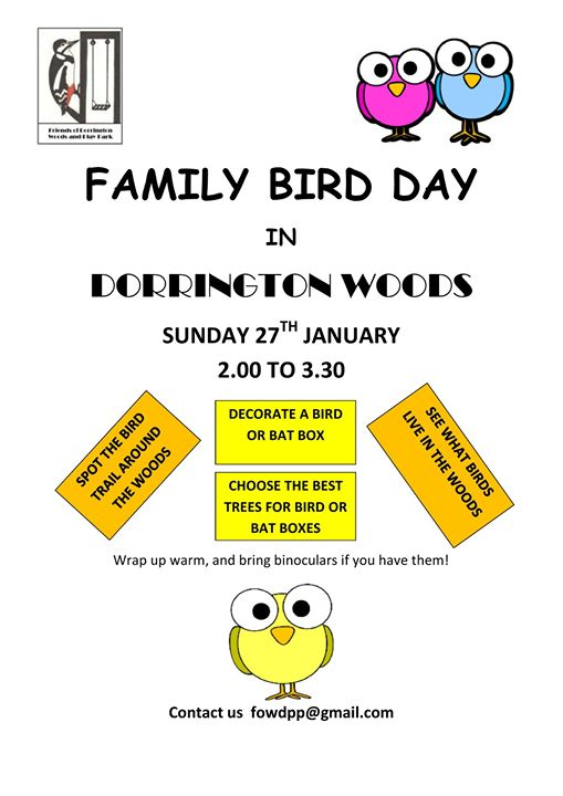 Friends of Dorrington Woods and Play Park are holding a Family Bird Day on Sunday 27th January, all welcome